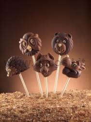 decoStick Wood Chocolate Lollies Molds