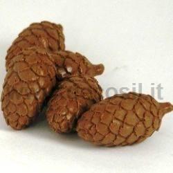 Pinecones Mold