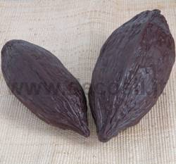 Medium Cocoa Fruit Mould