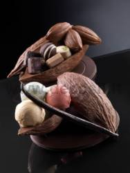Big Cocoa Fruit Mould