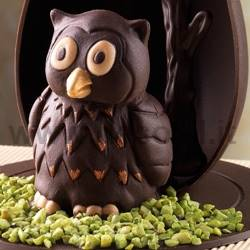 Owl mould Dotto