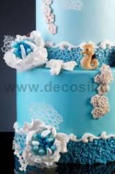 Moule Hippocampe