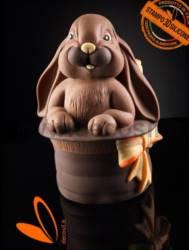 Stampo Guscio Uovo Coniglio nel Cilindro Magico