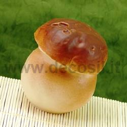 Boletus Mushroom mould